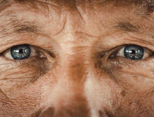 Sytë dhe sëmundjet kardiovaskulare